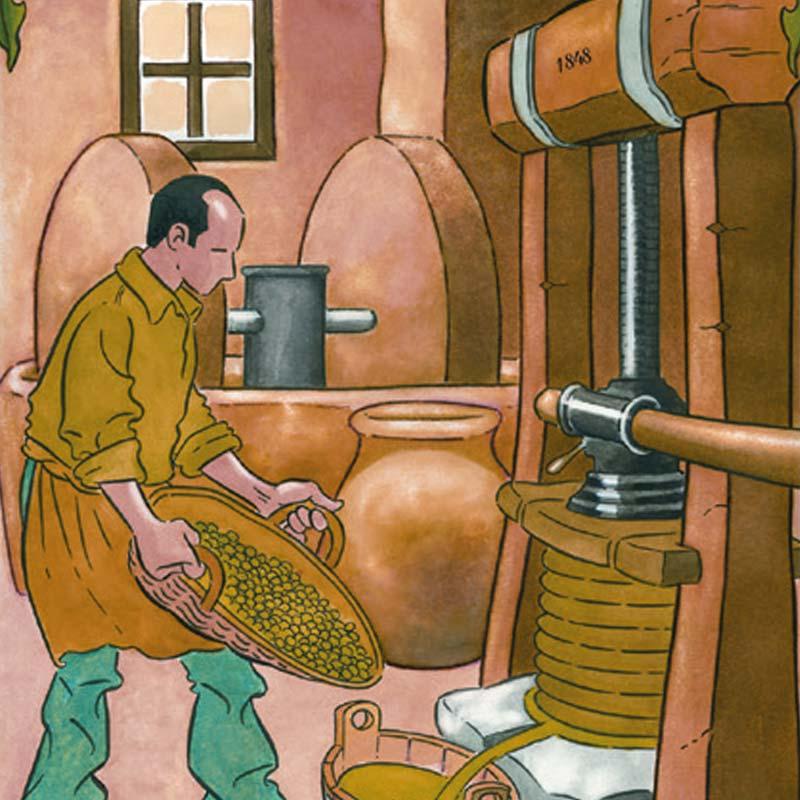 Illustrazione storica del Frantoio Tavian di Vado Ligure